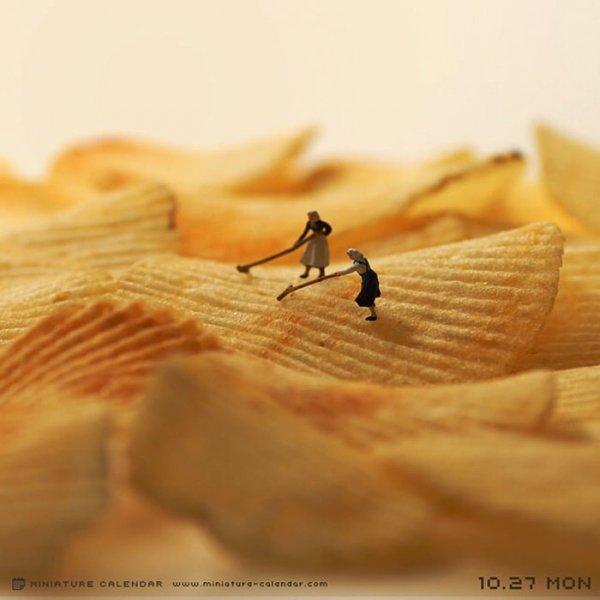 close up, wood, food, macro photography, leaf,