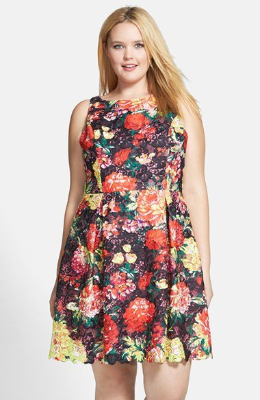 Adrianna Papell Print Lace Fit & Flare Dress (plus Size)