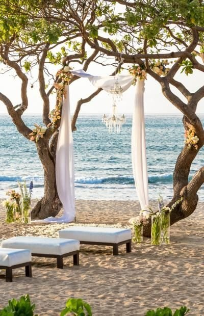 Hawaiian Beach Arch