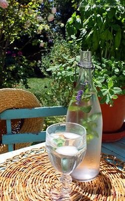 Mint and Lavender Water