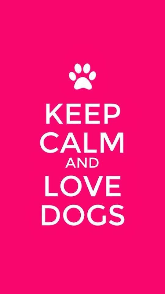 Keep Calm And Love Cats And Dogs