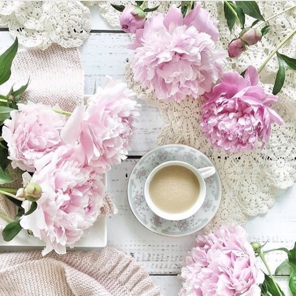 26 of Today's Mesmerizing 😍 Flowers Inspo for Gals Who Appreciate 🙏🏼 Beauty 💝 ...