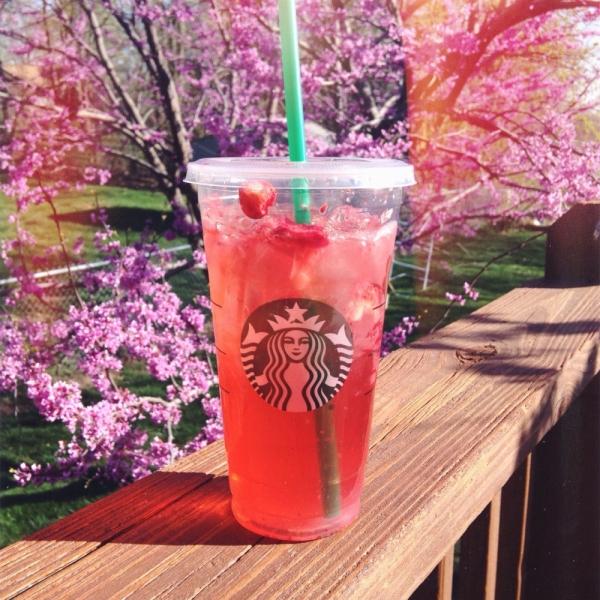 Starbucks, pink, flower, centrepiece, drink,