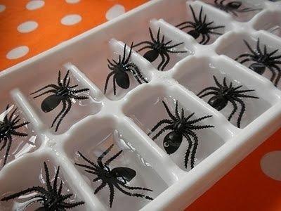 1 Spider Ice Cubes