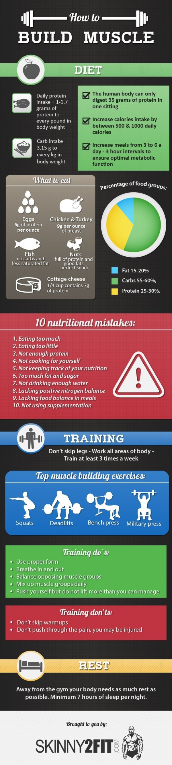 Learn How to Build Muscle