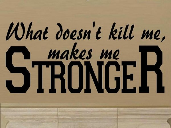 """""""from Life's School of War: What Does Not Kill Me Makes Me Stronger."""""""