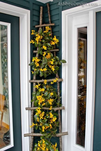 Branch Ladder for Climbing Vines or Hanging Small Pots of Flowers and Plants