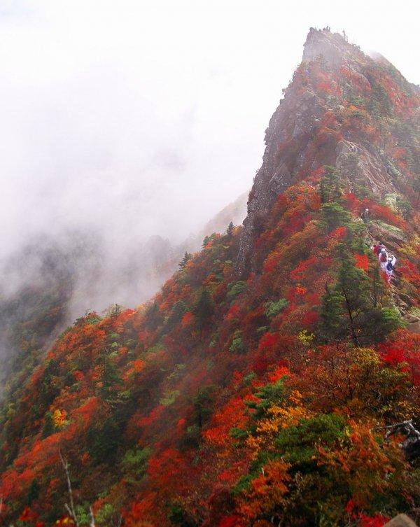 Assuage Your Spirit in Shikoku, Japan