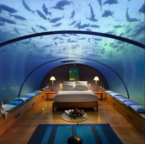 Image result for Jules' Undersea Lodge, Florida:
