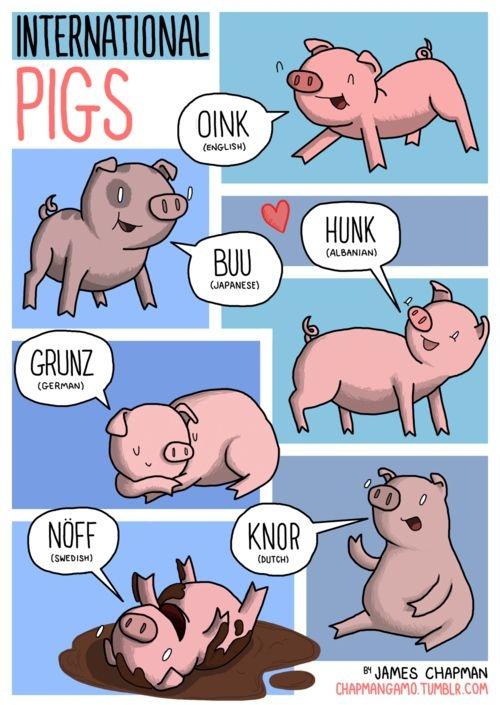 Pig-Speak?