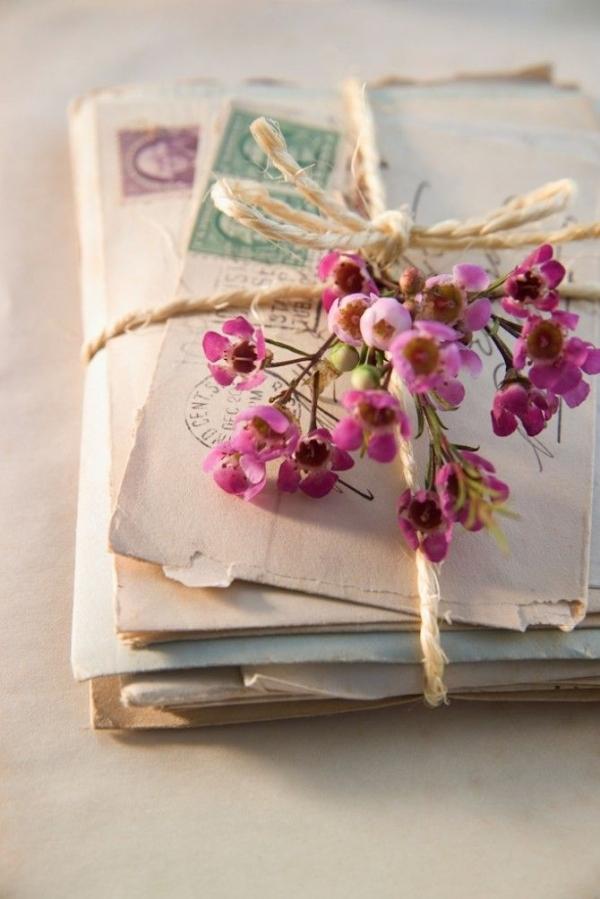 pink, flower, blossom, floristry, petal,