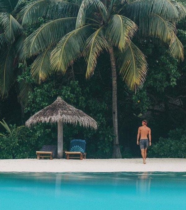 vacation, swimming pool, tree, sea, resort,