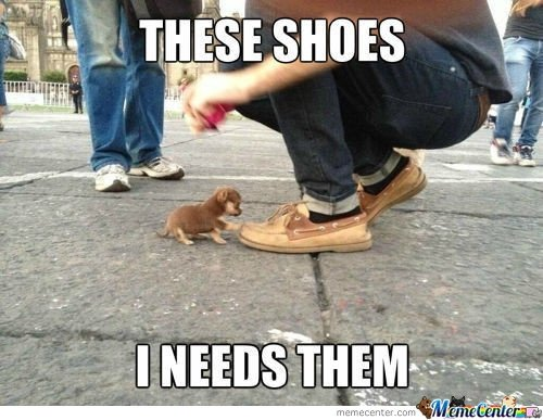 ti7pf5qu eternal shoe lust 14 hilariously relatable fashion quotes and