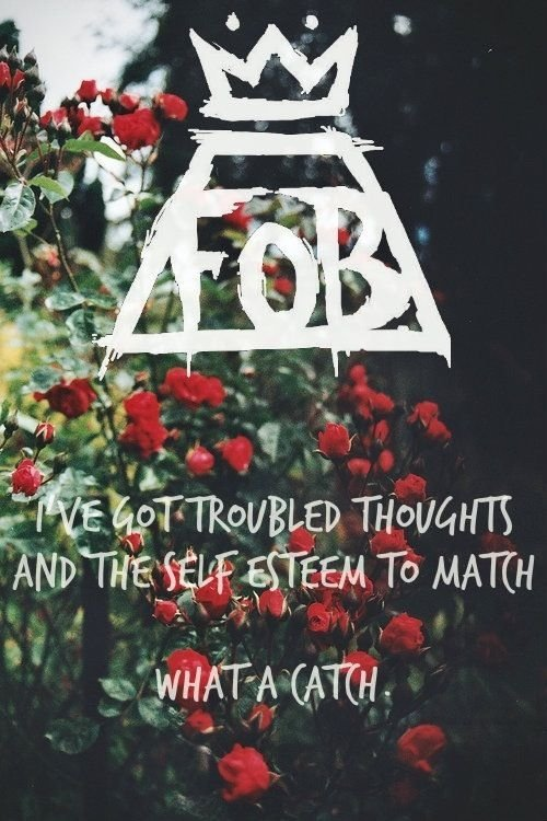 Quot What A Catch Donnie Quot 15 Fall Out Boy Lyrics That Ll
