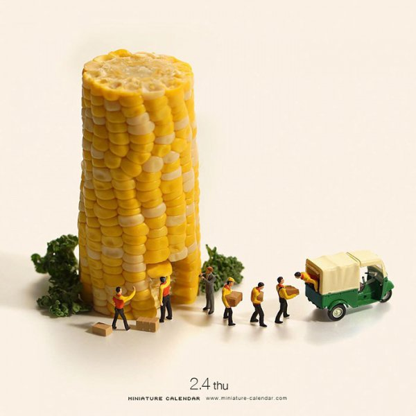 food, yellow, produce, corn on the cob, dish,