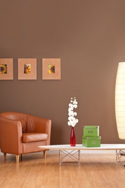 If Youre A Down To Earth Peaceful Person Then Brown Wall Might Be For You This Earthy Colour Could Add Some Great Atmosphere Your Room