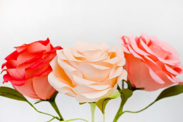 papier crépon rose - 8 fleurs géantes bricolage délicieusement…