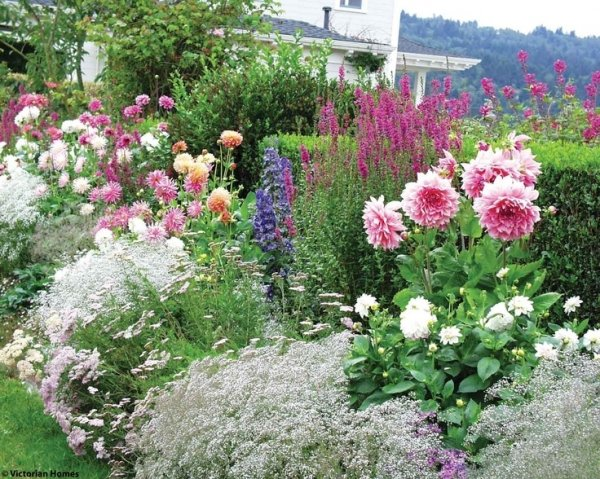 Ground Cover 46 Fun Ideas for Your Little Flower Garden