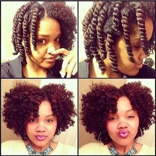 44 two strand twist out   67 crushworthy natural hair