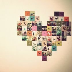 DIY Photo Collage 34 DIY Dorm Room Decor Projects To Spice Up