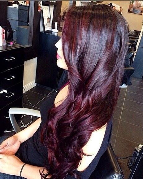 Dark Purple Burgundy Hair Color
