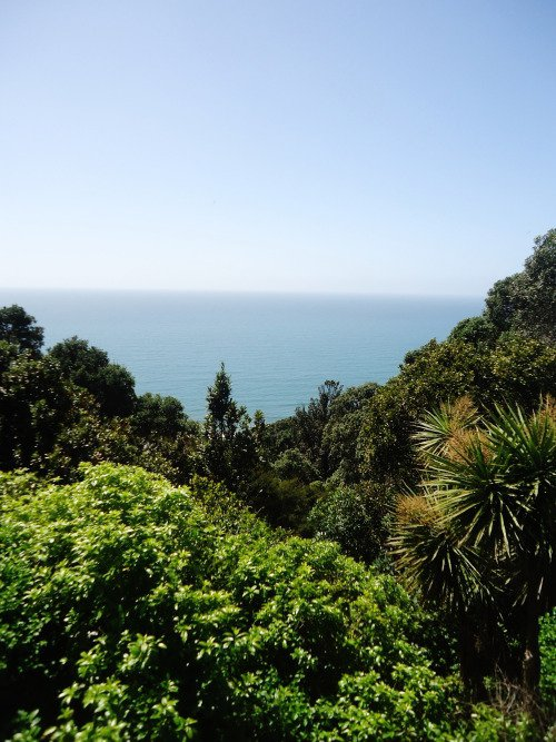 The Bay of Plenty is the Best Part of New Zealand