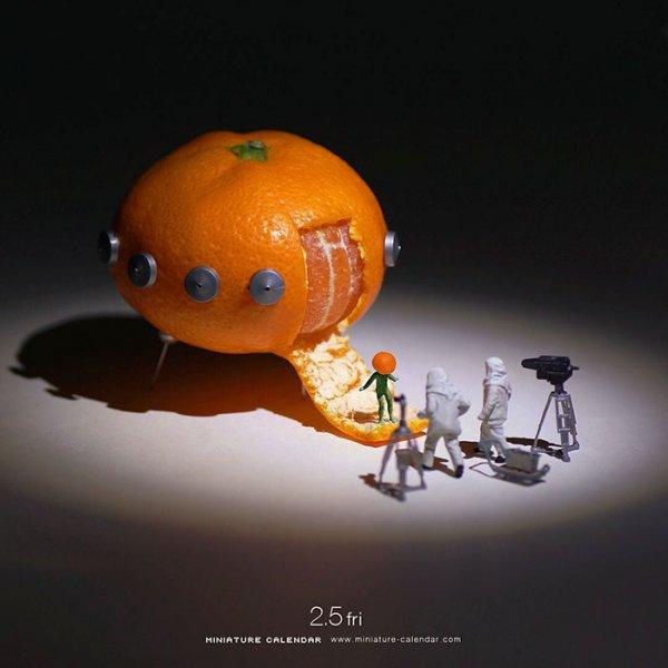 macro photography, toy, produce,