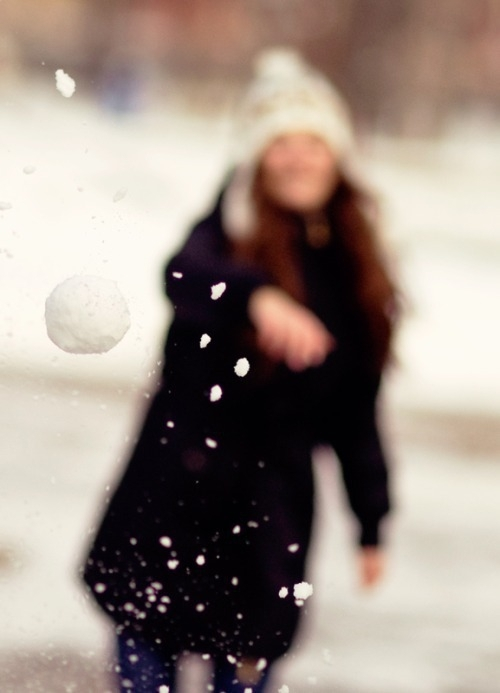 Have a Snowball Fight