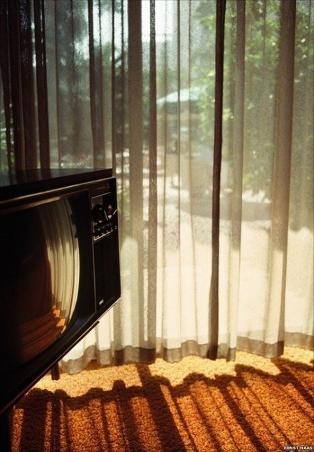 light,wood,floor,interior design,morning,