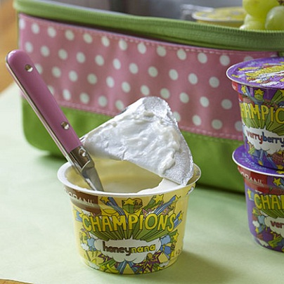 All Natural Greek Yogurt: Healthy Kids' Lunch Ideas...