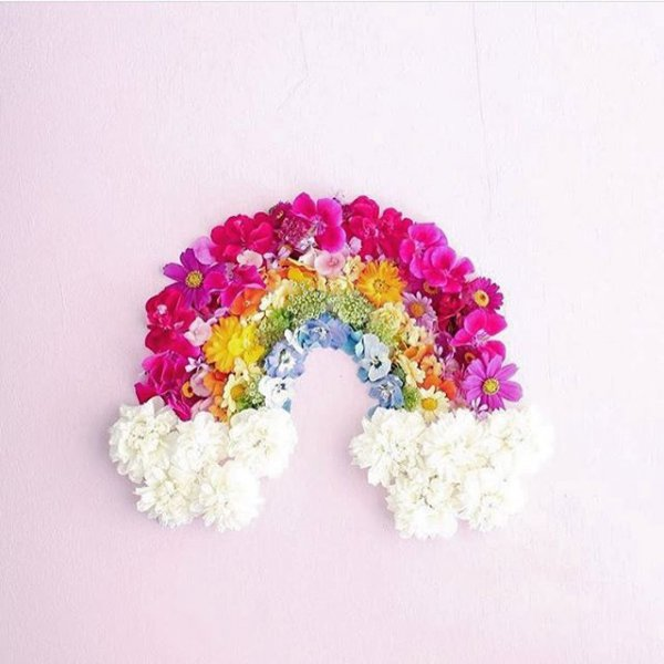 pink, flower, fashion accessory, flower bouquet, petal,