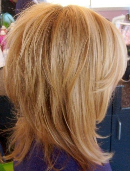 Hairstyle For Thin Volume Hair : Medium shag hairstyles for thin hair to add