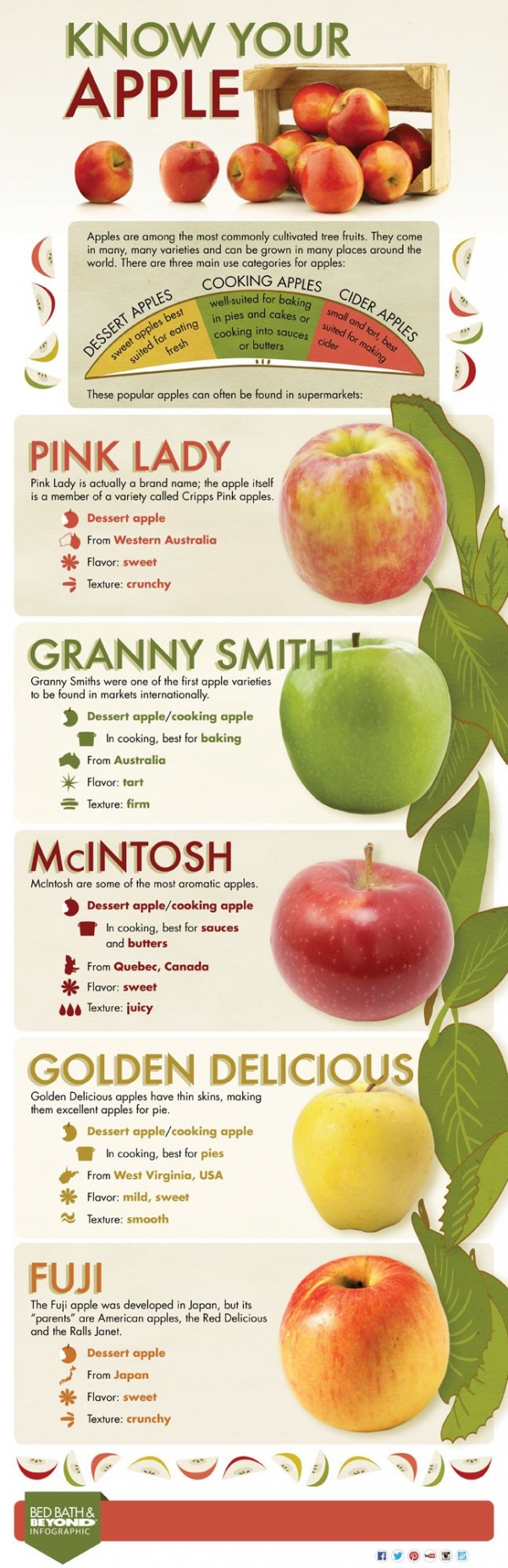 26. Know Your Apples - 42 Cheat Sheet Infographics to Turn ...