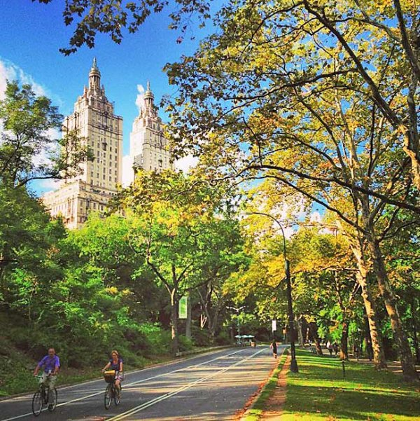 Central park new york the best places in the world for for Best places to go in central park