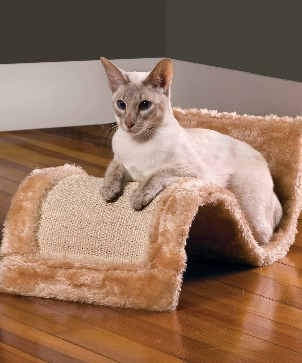 Is My Cats Scratching Post Too Small