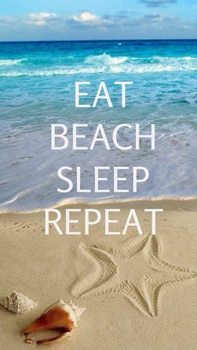 sand,ocean,sea,biology,coast,