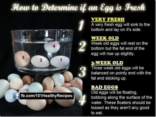 Know How to Tell if Your Eggs Are Fresh
