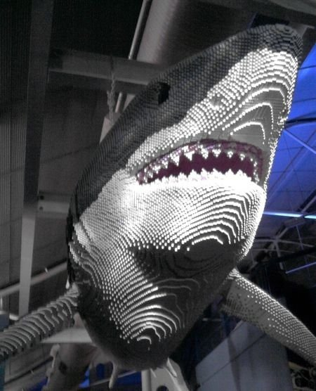 Megalodon Shark Eating People   newhairstylesformen2014.com