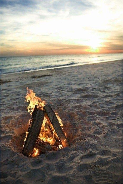 shore,sea,ocean,sunset,coast,