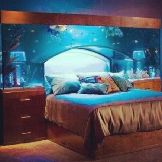 7 headboard 46 inspiring fish tanks for the aquatic for Fish tank bedroom ideas