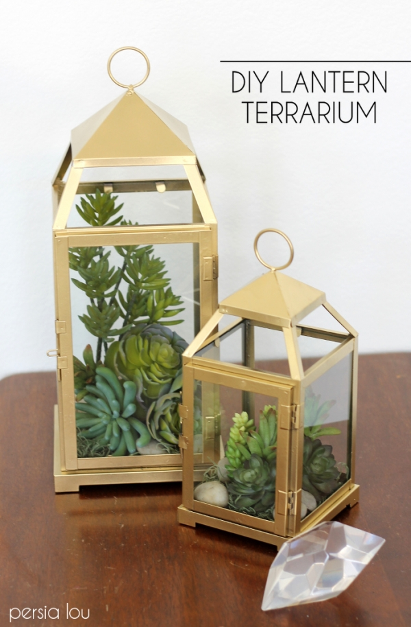 Lantern insanely beautiful succulent centerpieces
