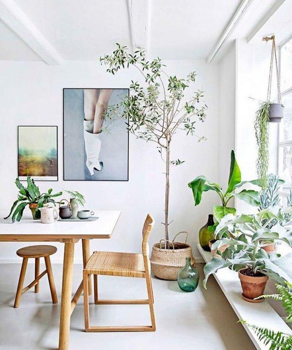 room, dining room, living room, wall, interior design,