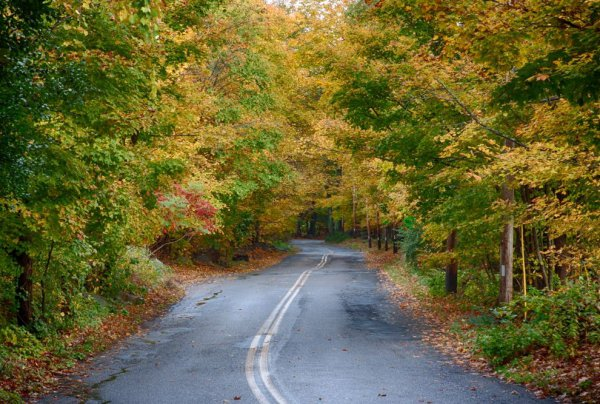 Essex Coastal Scenic Byway Awesome Places To Take A Fall