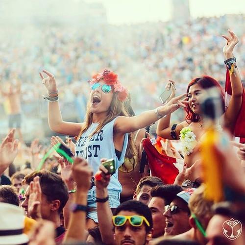 Attend a Summer Music Festival