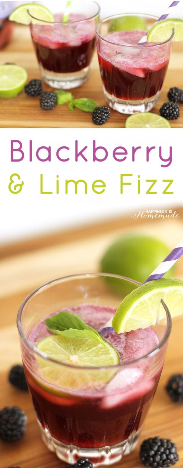 Blackberry and Lime Fizz Cocktail