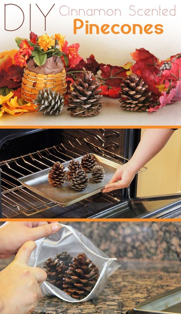 Cinnamon-Scented Pinecones