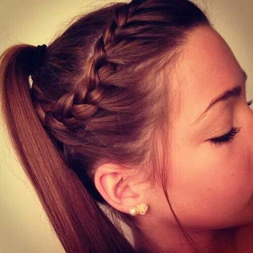 Braid Ponytail 15 Easy and Quick Updos to do in 5