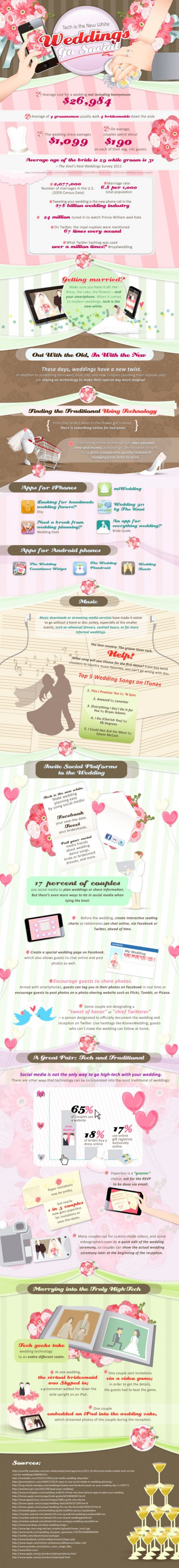 The Best Wedding Infographic Ever!