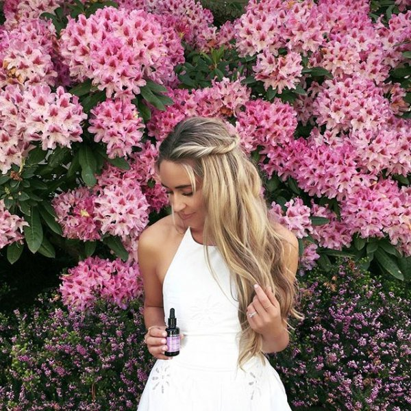 plant, pink, flower, woman, floristry,