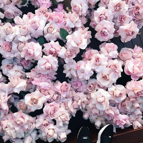 16 of Today's Drool Worthy 🤤 Flowers Inspo for Dolls Who Love ❤️ Pretty Things 😇 ...